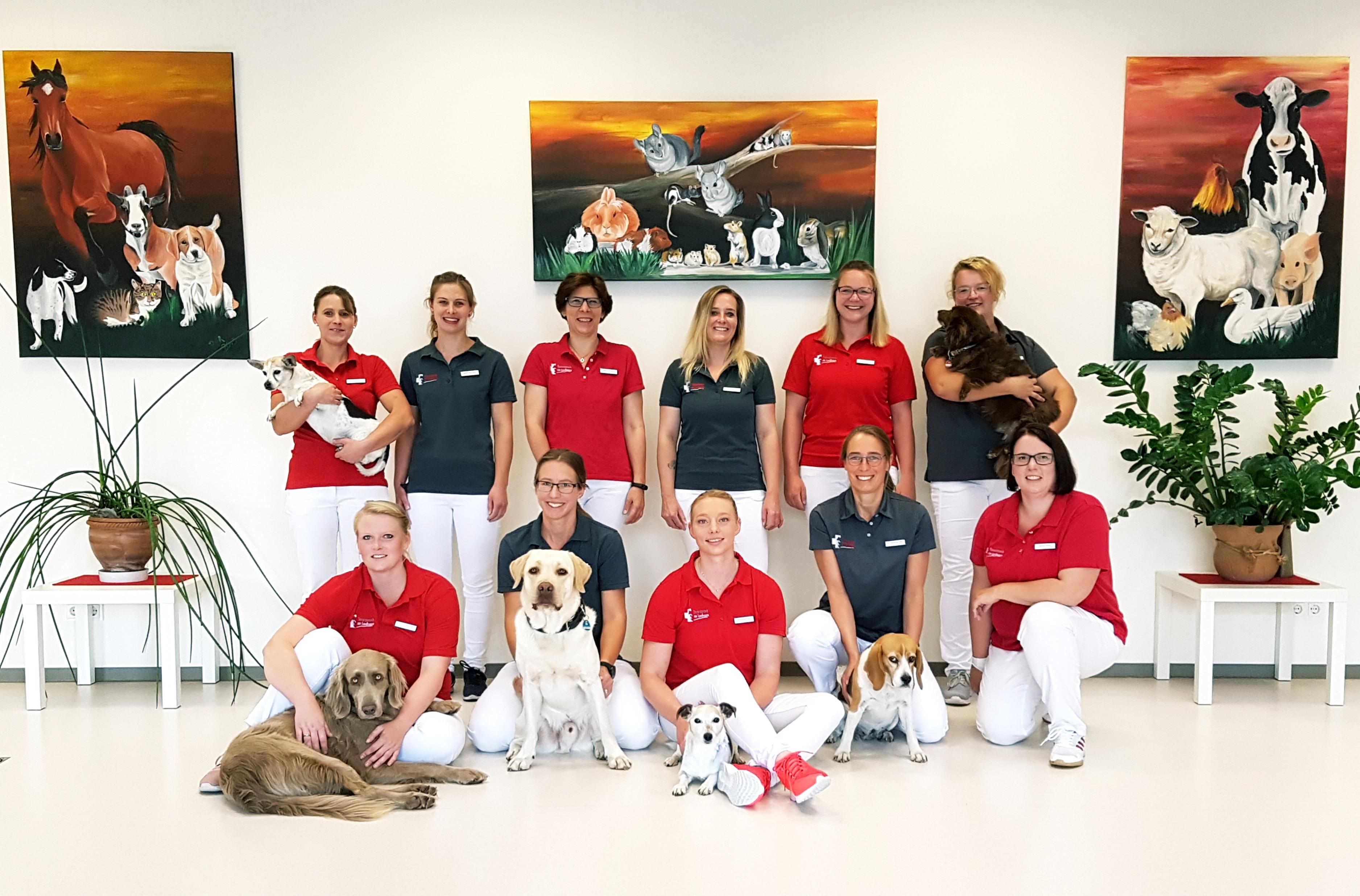 Das Team der Tierarztpraxis am Landhagen in Oelde